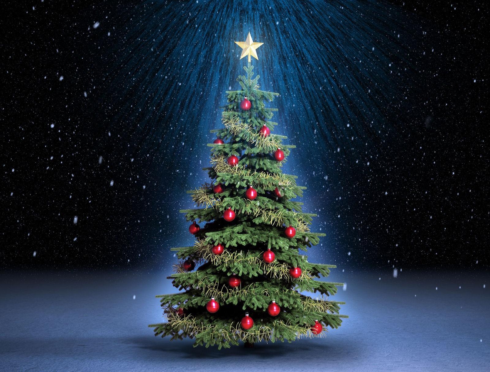 cuentos cortos de navidad