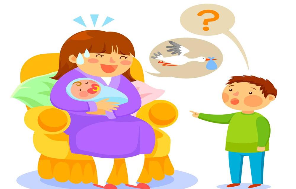 Como nacen los bebes para niños